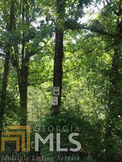 1074 Bell Ct, Ranger, GA 30734 (MLS #8898181) :: Military Realty