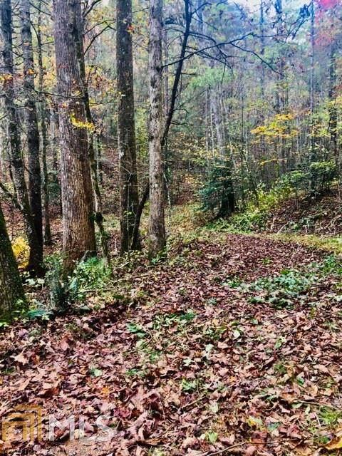 0 Pleasant Oak Trl - Photo 1