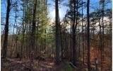 1684 Shade Tree Dr, Ellijay, GA 30540 (MLS #8917639) :: Team Cozart