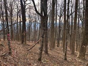 0 Big Stump Mountain Trail, Jasper, GA 30143 (MLS #8917642) :: The Durham Team