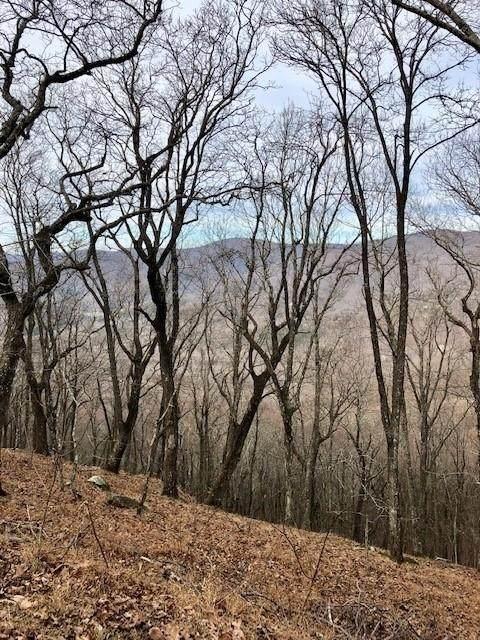0 High Trail Vista Circle, Jasper, GA 30143 (MLS #8917658) :: The Durham Team