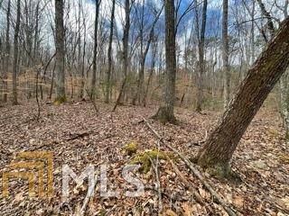 0 Lance Mountain Acres Lot 28, Blairsville, GA 30512 (MLS #8921315) :: Military Realty