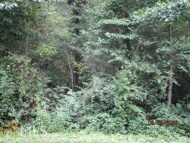 0 Wolf Creek Rd - Photo 1