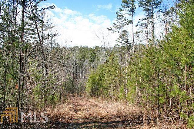 0 Whitepath Rd, Ellijay, GA 30540 (MLS #8931583) :: Buffington Real Estate Group
