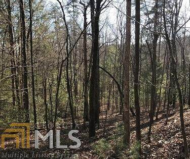 0 Trails End Summit Lt 41, Ellijay, GA 30540 (MLS #8934348) :: Military Realty