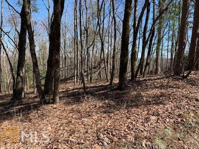 9 Bear Gap Rd, Clarkesville, GA 30523 (MLS #8937251) :: Military Realty