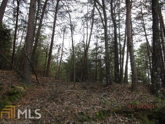 0 Lewis Crump Rd, Carnesville, GA 30521 (MLS #8943601) :: Perri Mitchell Realty
