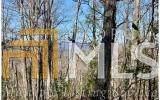 1026 Raccoon Ridge - Photo 21