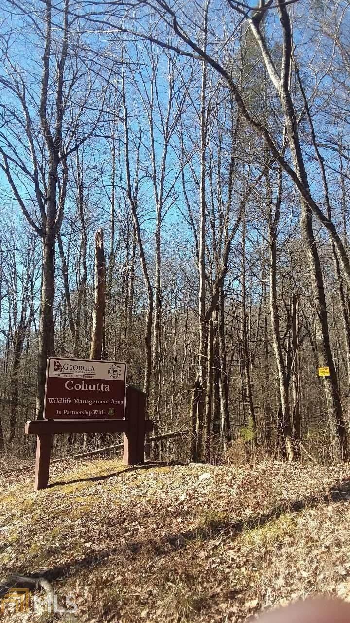0 Wilderness Trl - Photo 1