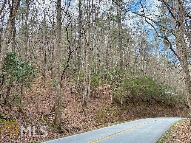 0 Clay Creek Falls Rd 21 +/- Ac, Dahlonega, GA 30533 (MLS #8950148) :: RE/MAX Eagle Creek Realty