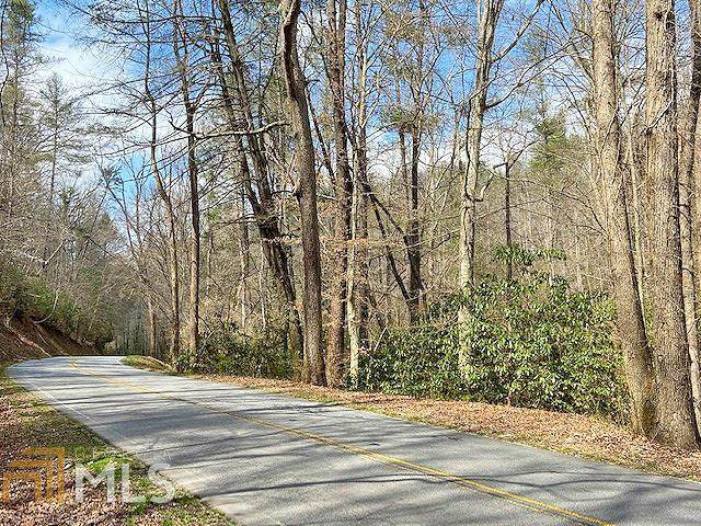 0 Clay Creek Falls Rd 38+/-, Dahlonega, GA 30533 (MLS #8950153) :: RE/MAX Eagle Creek Realty