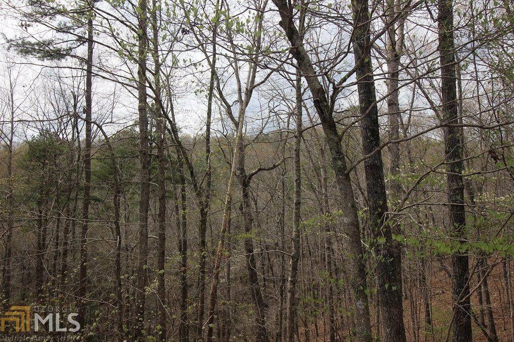 101R Mountain Creek Hollow Dr - Photo 1