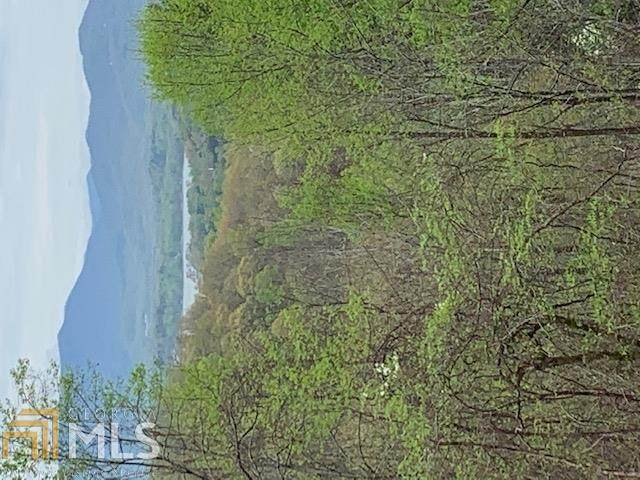 0 High Meadows Lt 10, Hayesville, NC 28904 (MLS #8964059) :: Perri Mitchell Realty
