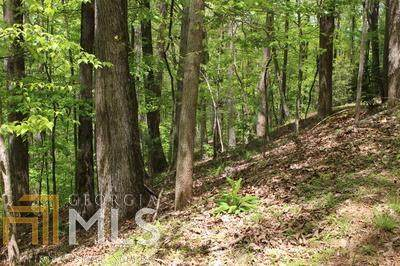 0 Sleepy Hollow Rd M26 Lt, Ellijay, GA 30536 (MLS #8968761) :: Military Realty