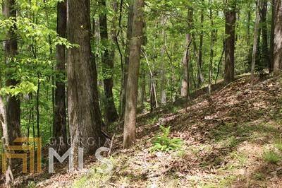 0 Sleepy Hollow Rd M26 Lt, Ellijay, GA 30536 (MLS #8968761) :: Savannah Real Estate Experts