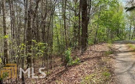 7 Oak Knolls, Hiawassee, GA 30546 (MLS #8968812) :: RE/MAX Eagle Creek Realty