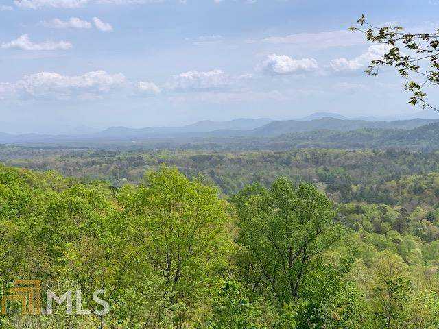 0 Arrowhead Dr Lt 10, Mineral Bluff, GA 30559 (MLS #8972257) :: Rettro Group