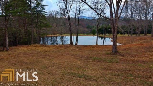 0 Sautee View Tract 5, Clarkesville, GA 30523 (MLS #8973877) :: Amy & Company | Southside Realtors