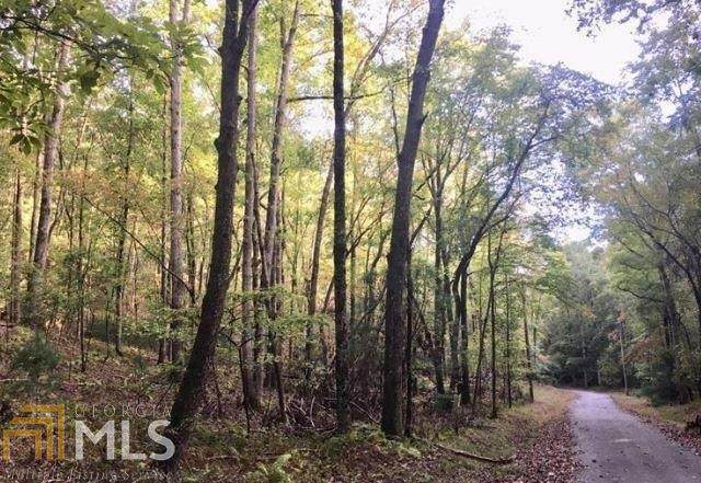 LOT 394 Walhalla Court, Ellijay, GA 30540 (MLS #8974406) :: RE/MAX Eagle Creek Realty
