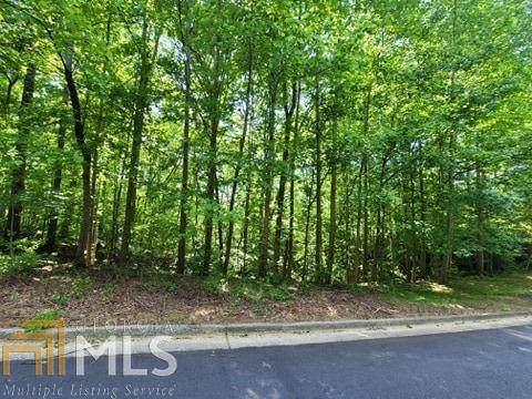 133 Pennsylvania Ave, Dallas, GA 30132 (MLS #8974919) :: Buffington Real Estate Group