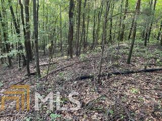 0 Kirk Langford Rd, Danielsville, GA 30633 (MLS #8980335) :: RE/MAX Eagle Creek Realty