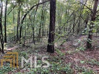 0 Kirk Langford Rd, Danielsville, GA 30633 (MLS #8980336) :: RE/MAX Eagle Creek Realty