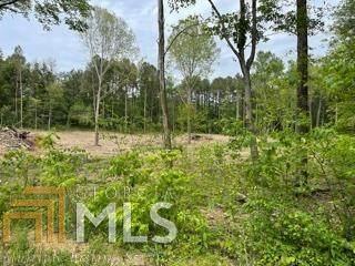 0 Piney Hill Lt 18, Chatsworth, GA 30705 (MLS #8988360) :: Buffington Real Estate Group