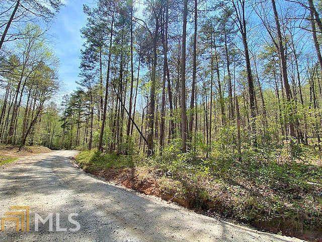 0 Lawrence Rd, Dawsonville, GA 30534 (MLS #8994819) :: Amy & Company | Southside Realtors