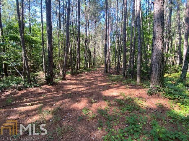 0 Locust Tree Dr, Dewy Rose, GA 30634 (MLS #8995658) :: Houska Realty Group