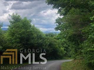 12 Hollyberry Cir, Hayesville, NC 28904 (MLS #9012023) :: The Durham Team