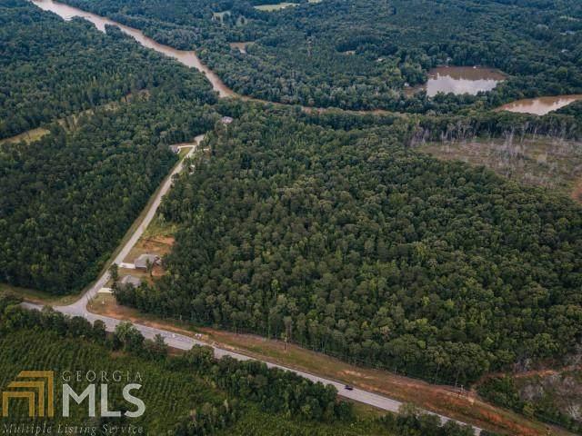 0 Highway 162 26.6 Acres, Covington, GA 30016 (MLS #9021499) :: AF Realty Group
