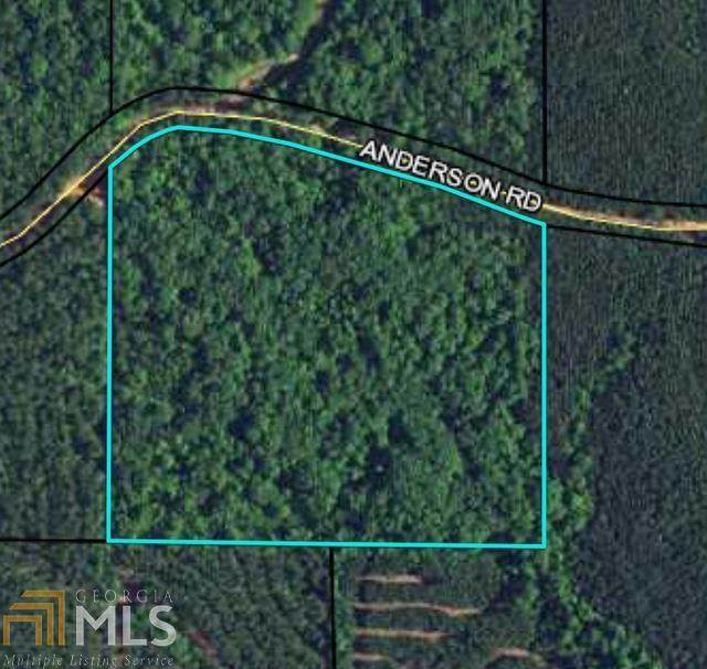 0 Anderson Rd, Waverly Hall, GA 31831 (MLS #9024180) :: Tim Stout and Associates