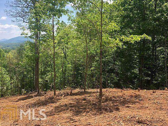 LT67B Crooked Creek Connector, Young Harris, GA 30582 (MLS #9028104) :: Rettro Group