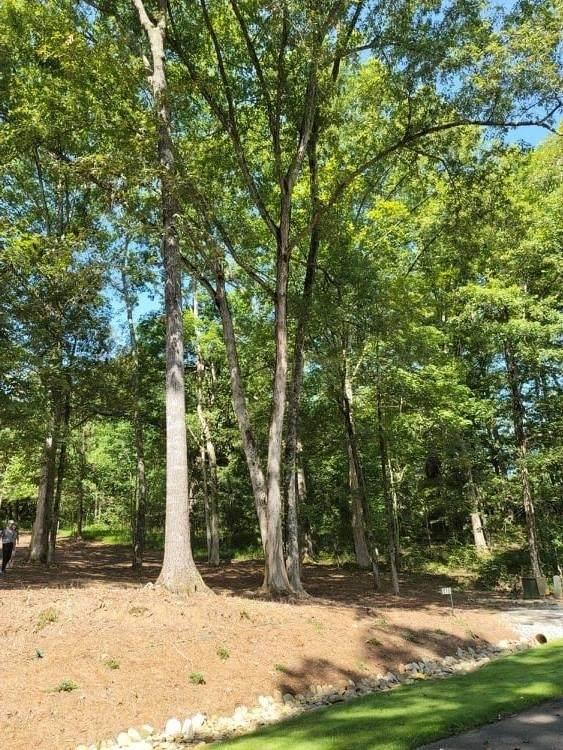 116 S Edgewater Trail, Toccoa, GA 30577 (MLS #9038946) :: Anderson & Associates