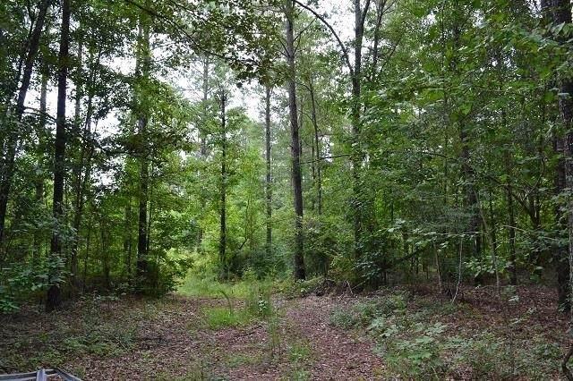 0 Lords Cemetery Road, Toomsboro, GA 31090 (MLS #9039739) :: Crown Realty Group