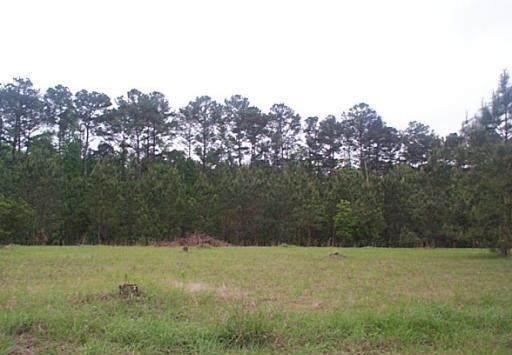 304 Lakeshore Drive, Savannah, GA 31419 (MLS #9045826) :: Crown Realty Group