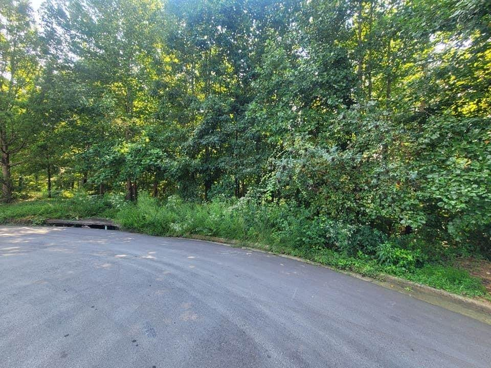 174 Union Ridge Way - Photo 1