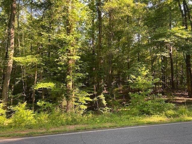 0 Pine Knoll Lane - Photo 1