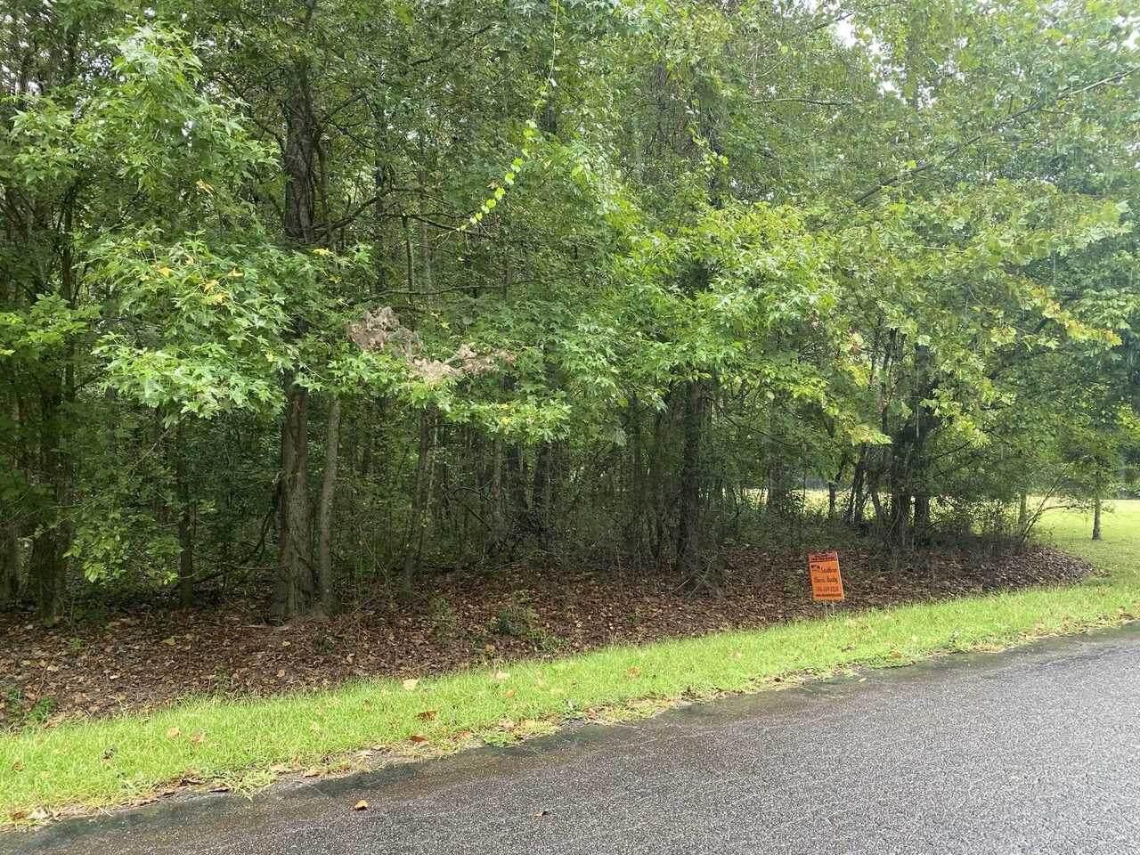 033 Riverside Plantation Road - Photo 1
