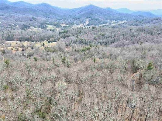 1405 Rabun Branch Road #42, Scaly Mountain, NC 28775 (MLS #9050751) :: Rettro Group