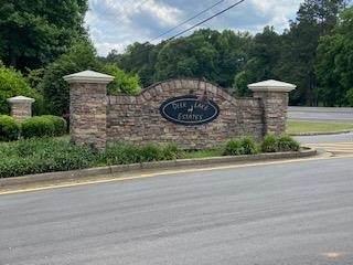 0 Deerlake Drive Lot 20, Griffin, GA 30224 (MLS #9051622) :: Rettro Group