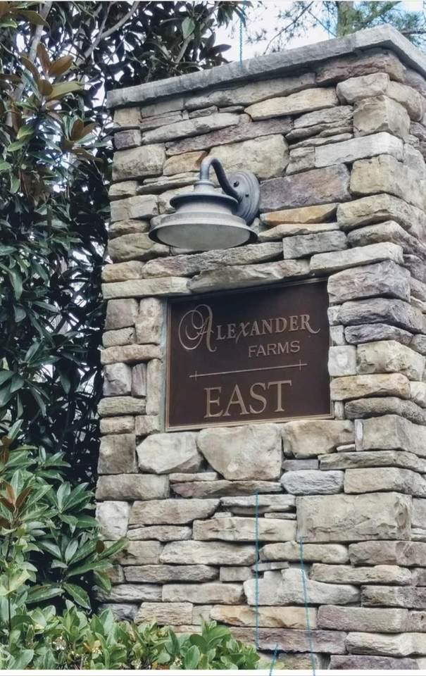 LOT 28 Alexander Farms., Statesboro, GA 30458 (MLS #9052055) :: Rettro Group