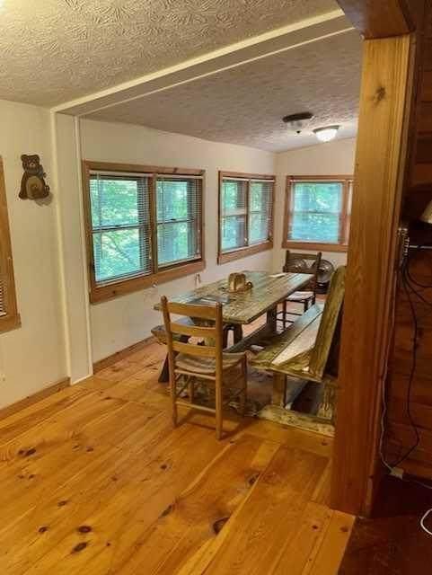 595 Ripshin Mountain Road, Blue Ridge, GA 30513 (MLS #9052916) :: Buffington Real Estate Group