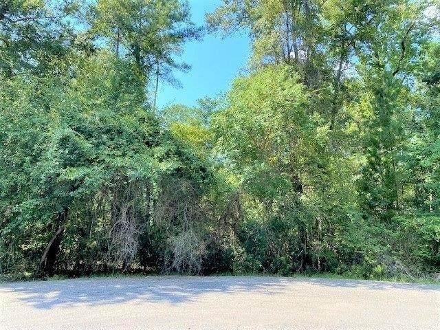 114 Salty Marsh Drive, Woodbine, GA 31569 (MLS #9054539) :: RE/MAX Eagle Creek Realty