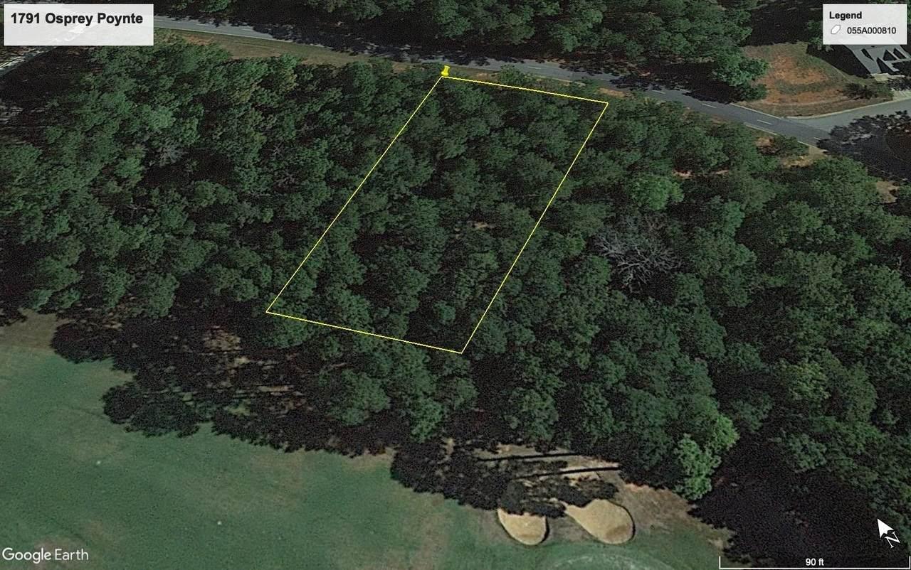 1791 Osprey Poynte - Photo 1