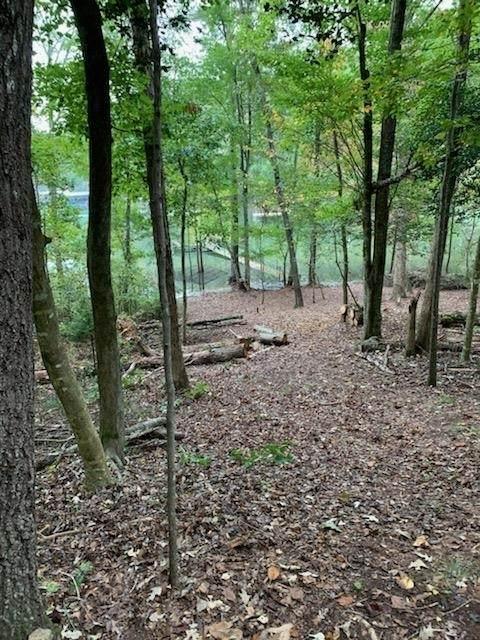 0 Freedom Heights Drive, Hartwell, GA 30643 (MLS #9066258) :: Statesboro Real Estate