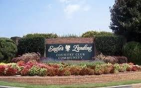 739 Bethpage Drive, Mcdonough, GA 30253 (MLS #9066921) :: Rettro Group