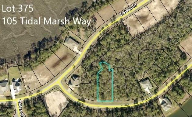 105 Tidal Marsh Way #375, St. Marys, GA 31558 (MLS #9067732) :: The Huffaker Group