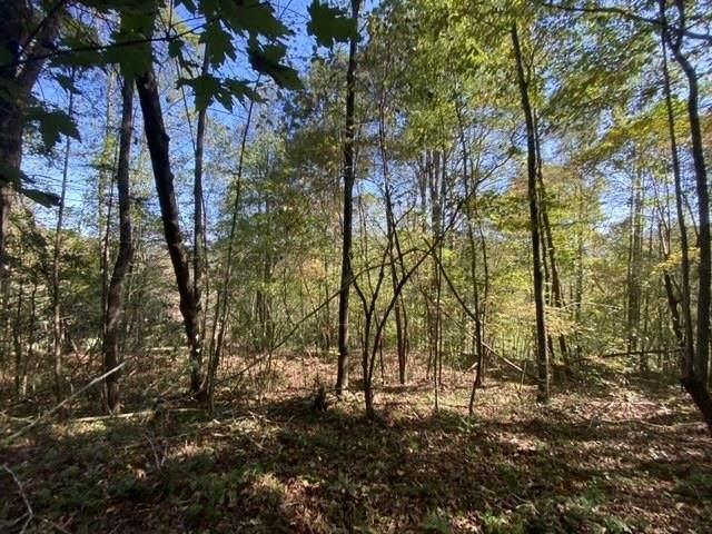0 Off Somerset, Young Harris, GA 30582 (MLS #9068455) :: Statesboro Real Estate