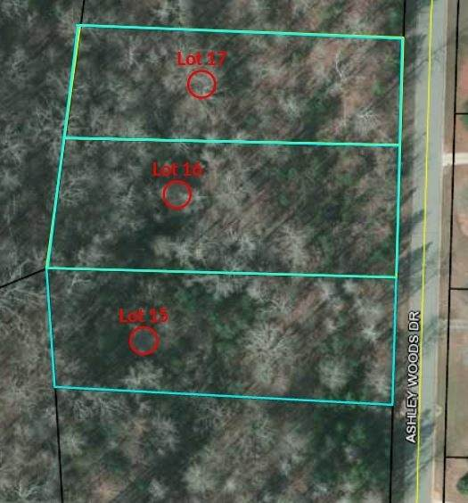 0 Ashley Woods Drive Lot 16, Newnan, GA 30263 (MLS #9068587) :: Anderson & Associates